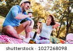 picnic time. young smiling... | Shutterstock . vector #1027268098