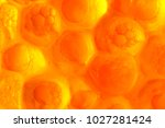 abstract orange background from ... | Shutterstock . vector #1027281424