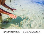 playing with sea fish in... | Shutterstock . vector #1027320214