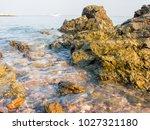 rocks on the beach  rocks in... | Shutterstock . vector #1027321180