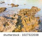 rocks on the beach  rocks in... | Shutterstock . vector #1027322038