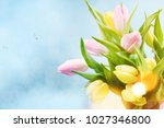 pink tulips flowers  for march... | Shutterstock . vector #1027346800