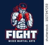 fighter emblem vector... | Shutterstock .eps vector #1027347253