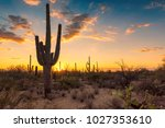 sunset in wild west whith... | Shutterstock . vector #1027353610