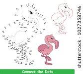 flamingo beautiful. dot to dot... | Shutterstock .eps vector #1027358746