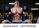 bald brutal sexy strong...   Shutterstock . vector #1027463620