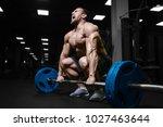 brutal sexy strong bodybuilder... | Shutterstock . vector #1027463644