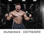 brutal sexy strong bodybuilder... | Shutterstock . vector #1027463650