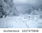 Small photo of Snow logging road in Siberian snow-covered and frosty forest. Tree branches bent under weight of snow and hoarfrost. Siberia as endless and cold country without roads, interminable forests and swamps
