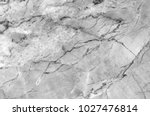 marble texture on grey marbled...   Shutterstock . vector #1027476814