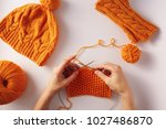 female hands knitting with... | Shutterstock . vector #1027486870