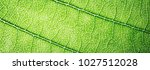 web banner green leaves macro... | Shutterstock . vector #1027512028