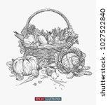 hand drawn fresh vegetables in... | Shutterstock .eps vector #1027522840