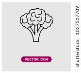 broccoli vector icon | Shutterstock .eps vector #1027527709