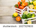 fresh citrus fruits   lime ... | Shutterstock . vector #1027529833
