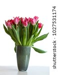 bouquet with pink and red... | Shutterstock . vector #1027531174