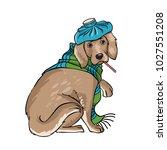 vet clinic. disease of the dog. ... | Shutterstock .eps vector #1027551208