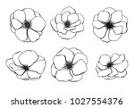Set Of Anemone Flower Hand...