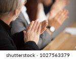 senior gray haired businessman... | Shutterstock . vector #1027563379