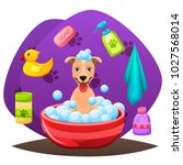 animal grooming salon... | Shutterstock .eps vector #1027568014