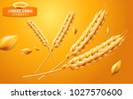 detailed wheat ears  oats or... | Shutterstock .eps vector #1027570600