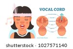 vocal cord anatomy vector...