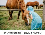 Small photo of Little scared funny child feeding wild horse with grass. Wary frightened girl touching horse muzzle outdoor at nature. Overcoming fear. Animal expressive face. Lovely kind kid in blue beautiful dress