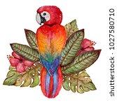 decorative watercolor parrot