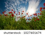 ecology and invironment....   Shutterstock . vector #1027601674