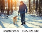 Stock photo man with dog on a leash walking on snowy pine forest in winter 1027621630