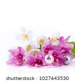 pink flowers with fresh green... | Shutterstock . vector #1027643530