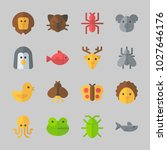 icons about animals with koala  ... | Shutterstock .eps vector #1027646176