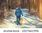 Stock photo a man with a labrador retriever dog walking in the winter forest on a snow covered road back to 1027661596
