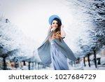 cheerful girl in light summer... | Shutterstock . vector #1027684729