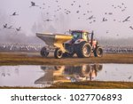 feeding of the cranes at... | Shutterstock . vector #1027706893