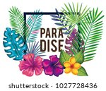 tropical and exotics flowers... | Shutterstock .eps vector #1027728436