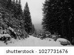 landscape at snow road in dense ... | Shutterstock . vector #1027731676