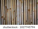 great blue heron   ardea...   Shutterstock . vector #1027745794