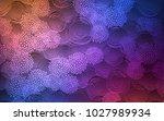 light blue  red vector natural... | Shutterstock .eps vector #1027989934