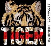 t shirt graphic design | Shutterstock .eps vector #1027992256
