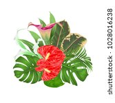 bouquet with tropical flowers... | Shutterstock .eps vector #1028016238