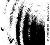 abstract grunge grid stripe... | Shutterstock . vector #1028037310