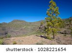 west of gran canaria  february... | Shutterstock . vector #1028221654