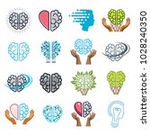 brain and intelligence vector... | Shutterstock .eps vector #1028240350