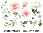 Stock photo set watercolor elements of roses hydrangea collection garden pink flowers leaves branches 1028245186