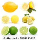 fresh and delicious lemon  green | Shutterstock . vector #1028256469