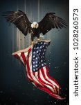 american bald eagle flying  ... | Shutterstock . vector #1028260573
