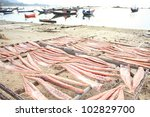 dried fish. | Shutterstock . vector #102829700