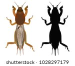 vector colored drawing of an...   Shutterstock .eps vector #1028297179