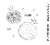 hand drawn illustrations of...   Shutterstock .eps vector #1028304190